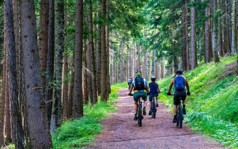 Inchiriere de biciclete - Vila-Simonte