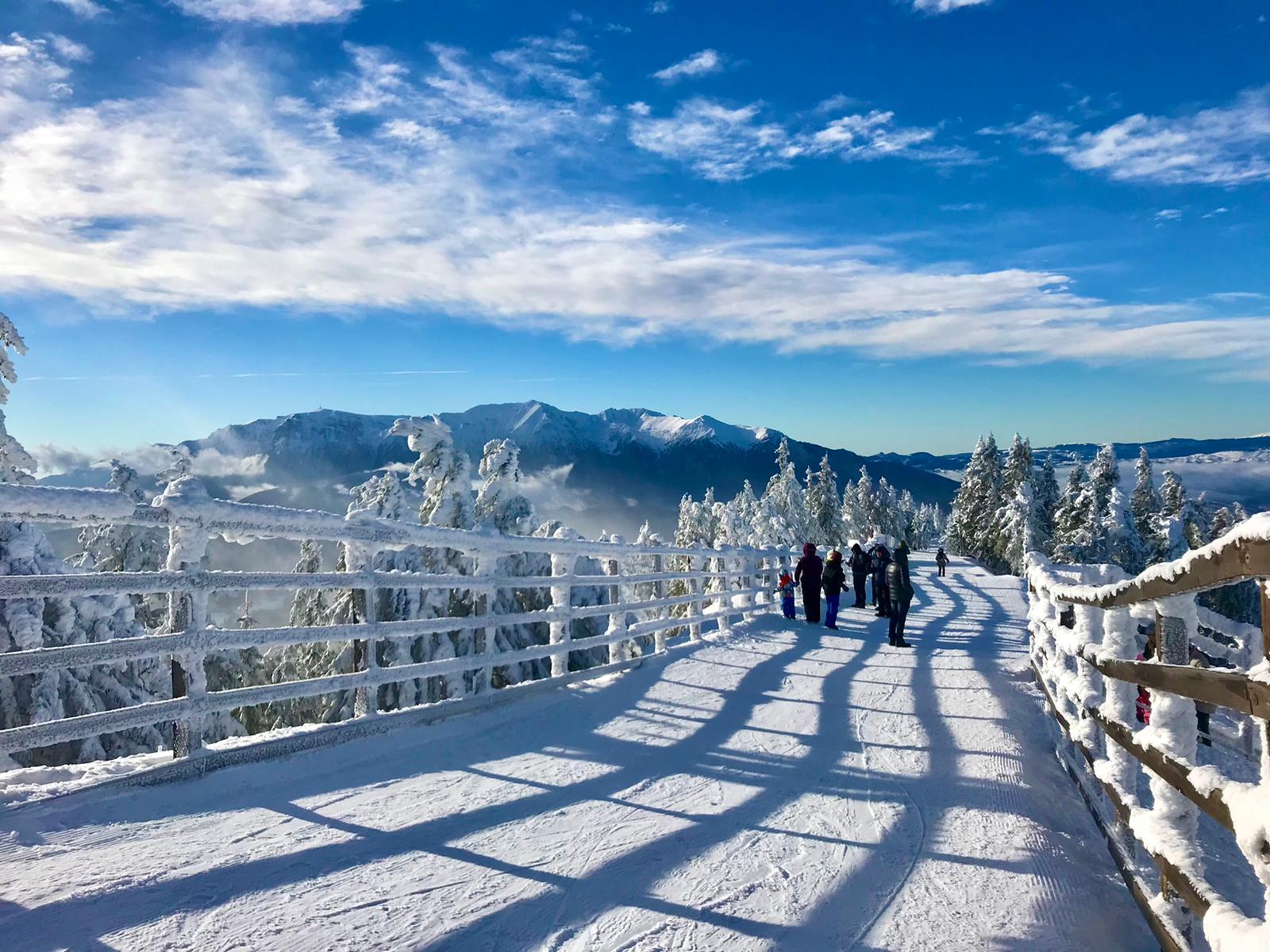 De ce să alegi muntele pentru un concediu de neuitat?